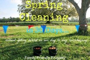 Spring Cleaning for the non-marthas