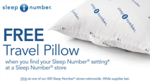 Sleep-Number-Travel-Pillow