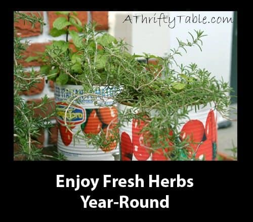 Enjoy fresh herbs year-round