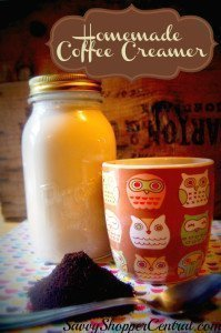 Homemade Coffee Creamer Base