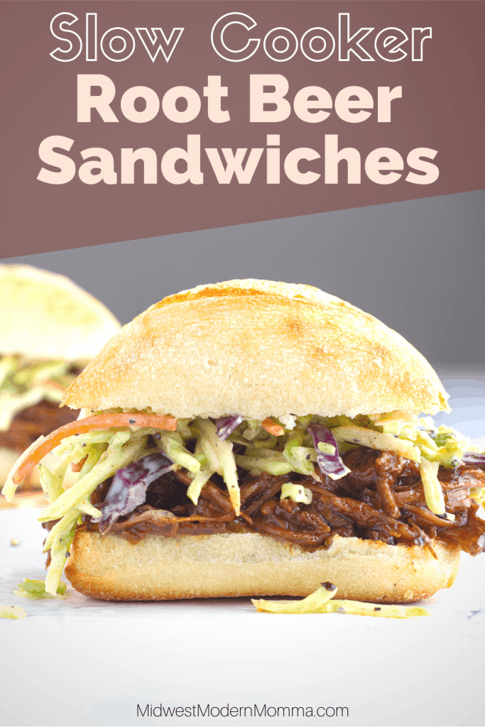 Barbecue sandwich with coleslaw