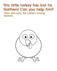Lost feathers