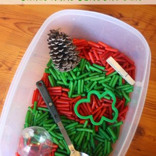 Christmas Sensory Bin Ideas