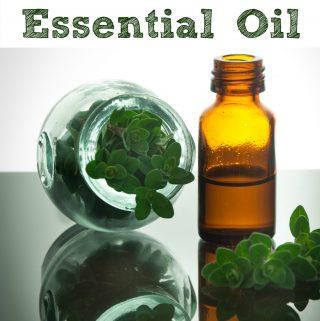 20 Ways to Use Oregano Essential Oil
