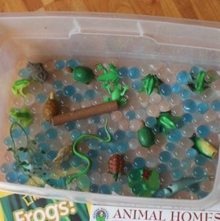 Pond Themed Sensory Bin Idea