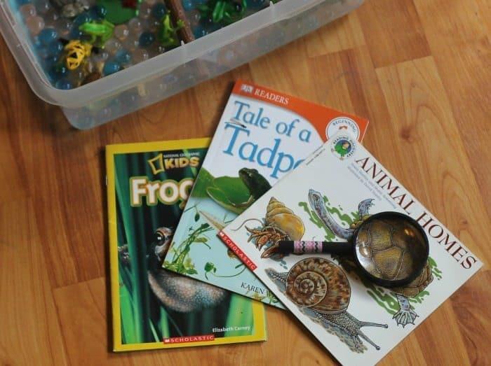 pond sensory bin books