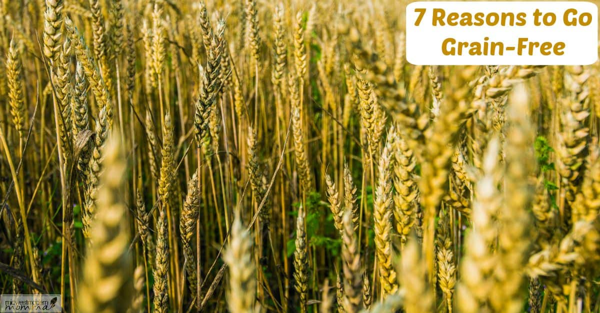 7 Reasons You Should Go Grain Free