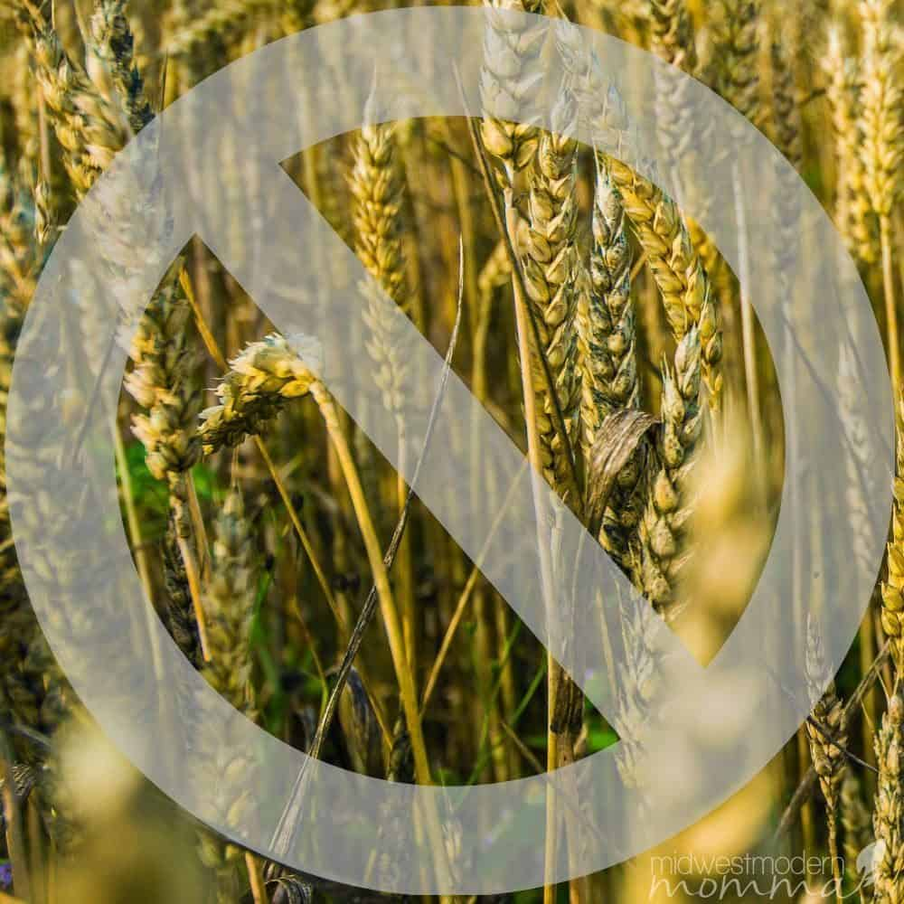 Thinking about going Grain-Free? Check out these 7 reasons & find out how to make the switch!