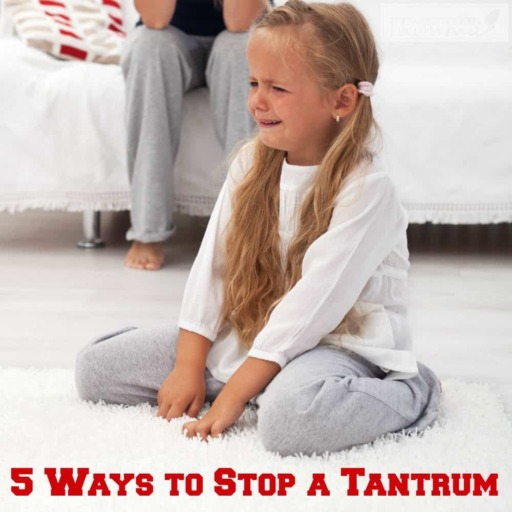 Tantrums are never a good thing when it comes to having a kid. It always happens at the worst time and it is always hard to regain control. If you are tired of tantrums and want to stop it in its tracks, there are some things you can do.