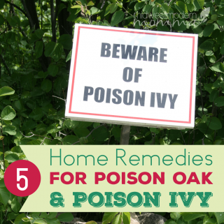 5 Home Remedies For Poison Oak & Poison Ivy