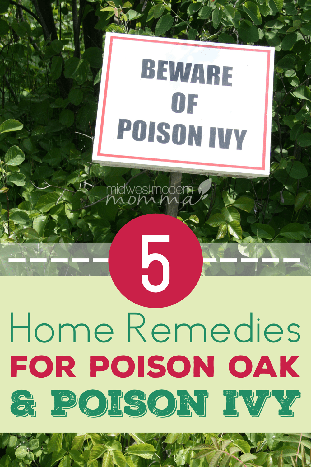 5 home remedies for poison oak poison ivy midwest modern momma. Black Bedroom Furniture Sets. Home Design Ideas