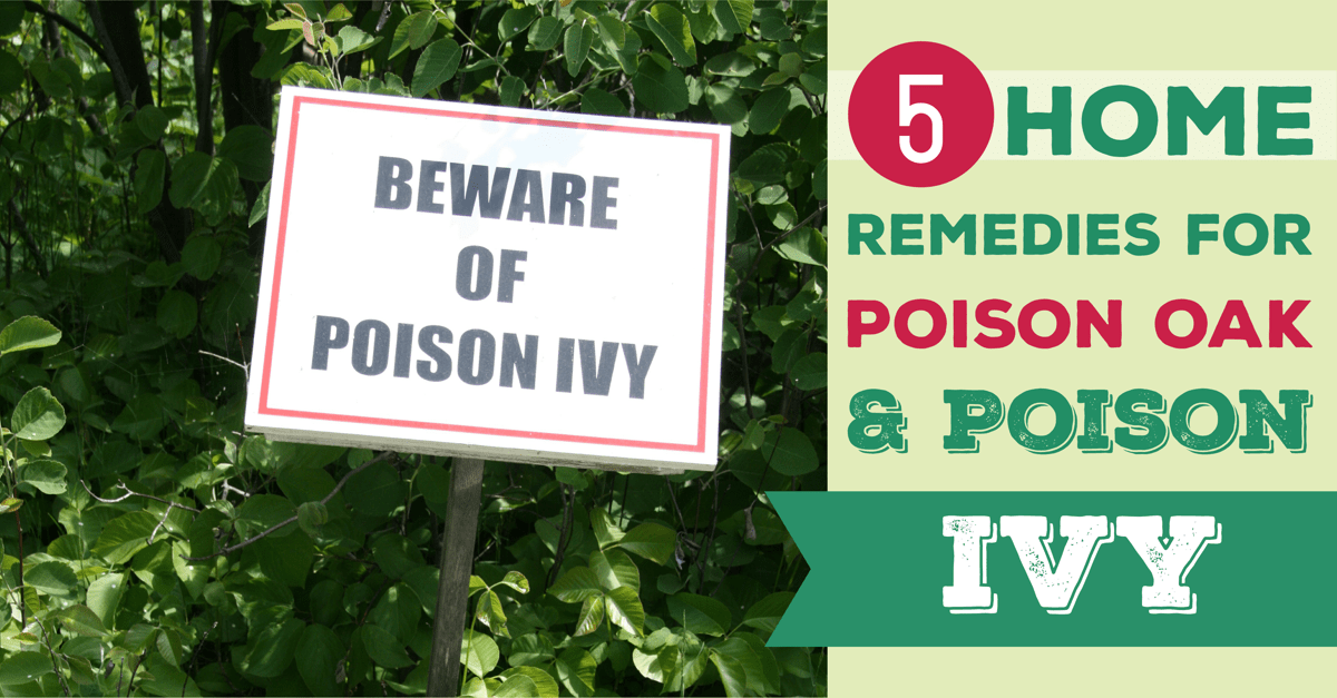 5 Home Remedies for Poison Ivy and Poison Oak