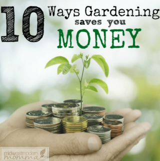 Vegetable gardening is a favorite method of saving money and cutting your grocery budget! Check out other great ways it saves you money!