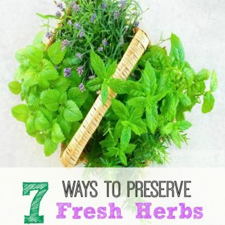 7 Tips For Preserving Fresh Herbs