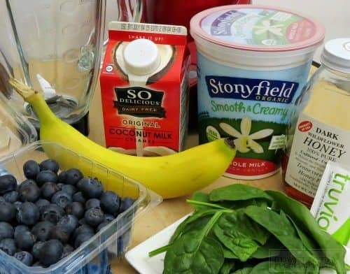Make our Vanilla Blueberry Smoothie for a delicious and healthy breakfast or snack! Chock full of antioxidants, this easy to make smoothie is a hit with the entire family!