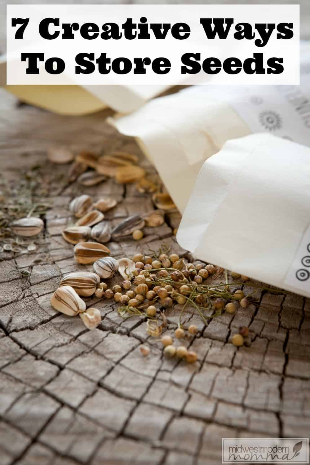 7 Creative Answers For How To Store Seeds