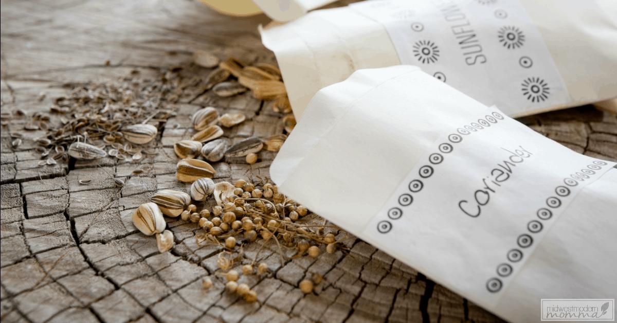 7 Creative Ways To Store Seeds