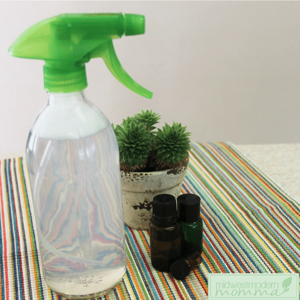 Mold and Mildew Spray