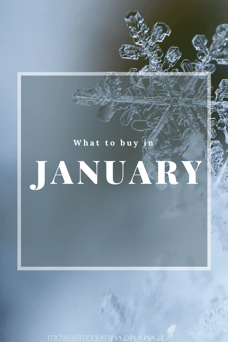 Cool Things To Buy In January To Save Money