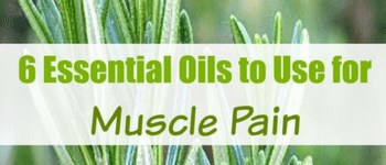 6 Essential Oils to Use for Muscle Pain