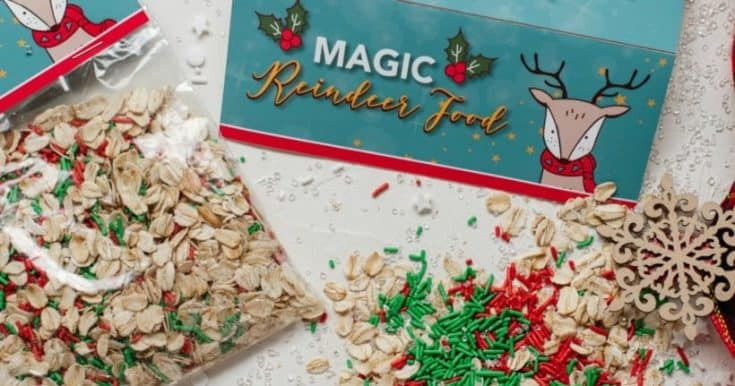 Easy Homemade Reindeer Food